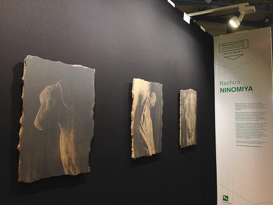 St-Arts-2015 at Strasbourg